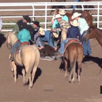 Horses' rear ends in Cheyenne