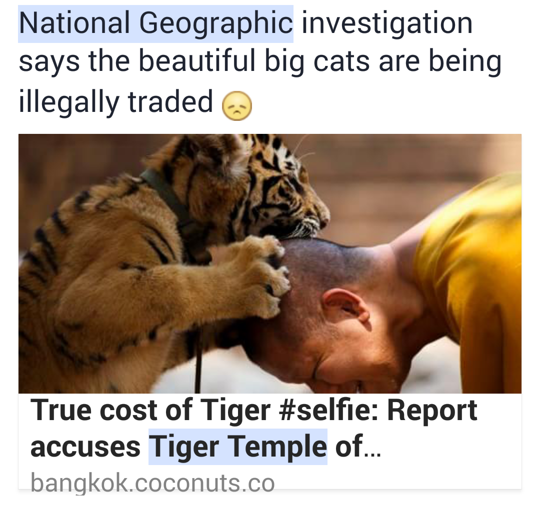 wildlife trafficking letter Letter to the editor rss  the measure would make wildlife trafficking violations – including poaching and illegal fishing – a more serious crime,.